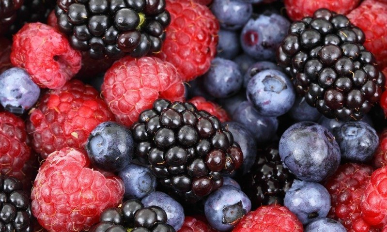 Foods for joint pain